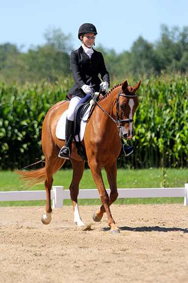 Dressage-Announcements